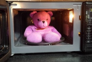 Beddy Bear microwaveable warmer