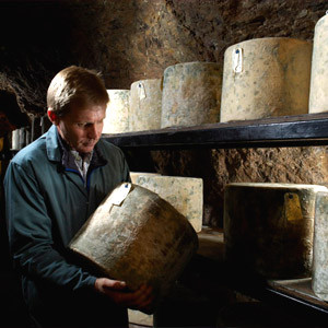 Bringing cave matured cheese back to Wookey Hole